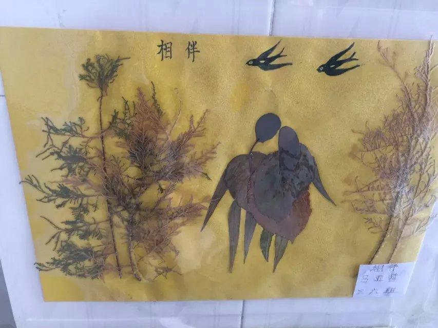亲亲自然 拥抱秋天 树叶贴画评比活动