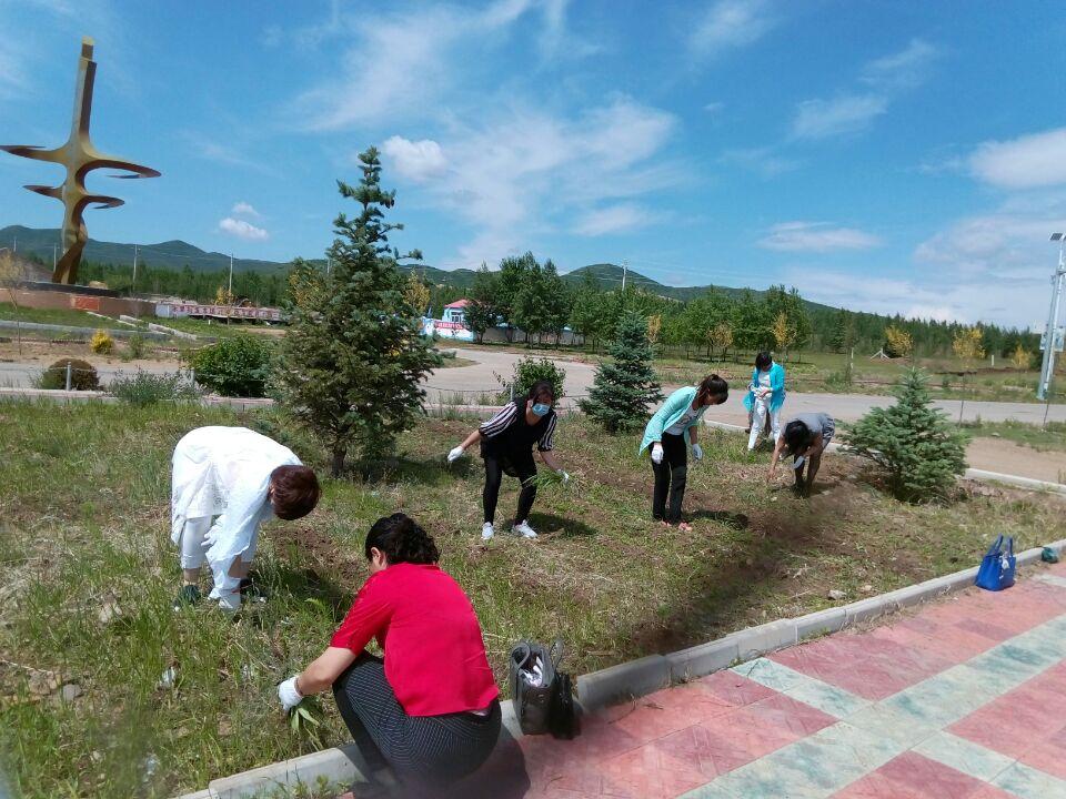 兴安盟扎赉特旗胡尔勒镇青年突击队开展栽花活动为 十个全覆盖工程