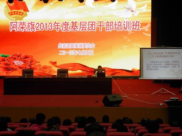 党走奋力实现中国梦》的工作报告