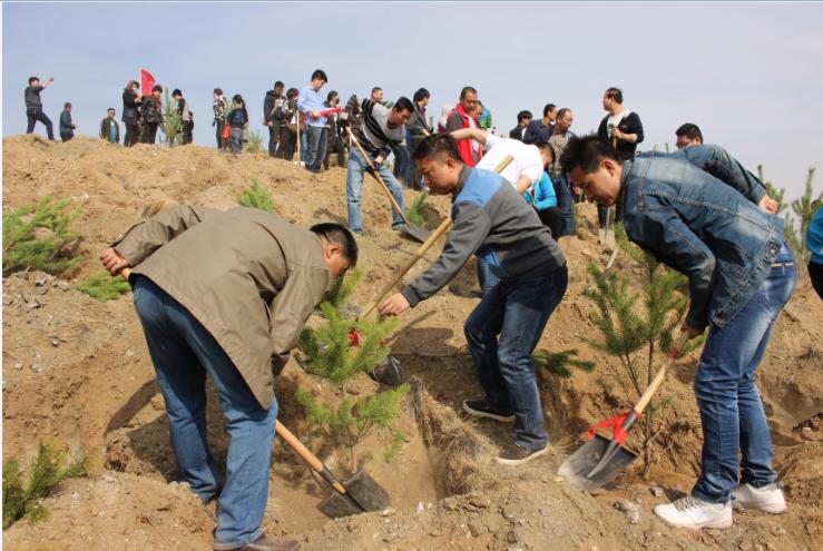 包头青山团委组织打造绿色生态屏障共建和谐云南省多少有初中图片